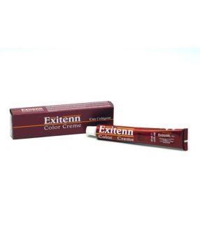 Tinte Exitenn exi-color mechas 60