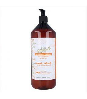 Champú Antioxidant Pure Green 1000ml