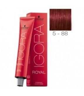Schwarzkopf Igora Royal Tinte 5-88 Castaño claro Rojo Intenso