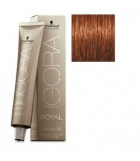 Schwarzkopf Igora Royal Absolutes Tinte 6-70 Rubio Oscuro Cobrizo Natural