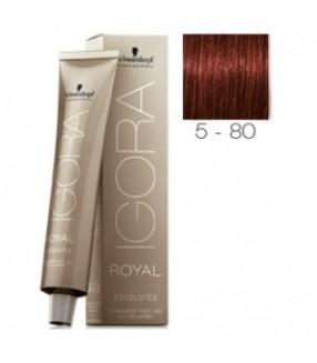 Schwarzkopf Igora Absolutes Royal Tinte 5-80 Castaño claro Rojo Natural